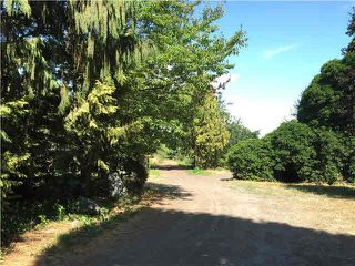 Main Photo: 14020 HARRIS Road in Pitt Meadows: North Meadows PI Agri-Business for lease : MLS®# C8031246