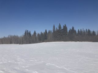 Photo 7: 253 TWP RD 610: Rural Westlock County Rural Land/Vacant Lot for sale : MLS®# E4191859