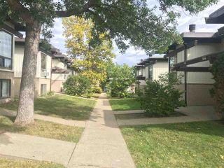 Photo 2: 542 LEE_RIDGE Road in Edmonton: Zone 29 House Half Duplex for sale : MLS®# E4204592