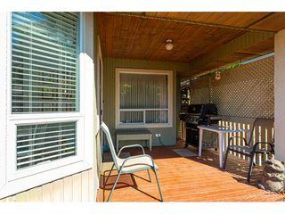 """Photo 33: 8168 154 Street in Surrey: Fleetwood Tynehead House for sale in """"FAIRWAY PARK"""" : MLS®# R2497613"""