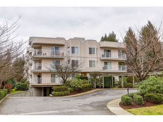 Photo 19: 310 12206 224 STREET in Maple Ridge: East Central Condo for sale : MLS®# R2028362