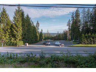 Photo 34: 25895 100 Avenue in Maple Ridge: Thornhill MR House for sale : MLS®# R2470052