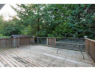 Photo 26: 25895 100 Avenue in Maple Ridge: Thornhill MR House for sale : MLS®# R2470052
