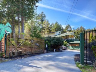 Photo 12: 6224 Llanilar Rd in : Sk East Sooke House for sale (Sooke)  : MLS®# 851492