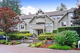 "Main Photo: 302 3383 CAPILANO Crescent in North Vancouver: Capilano NV Condo for sale in ""The Barclay"" : MLS®# R2485947"
