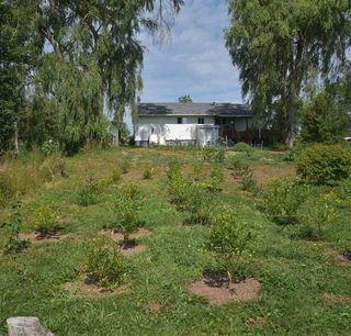 Photo 10: 9308 Highway 1 in Bridgetown: 400-Annapolis County Residential for sale (Annapolis Valley)  : MLS®# 202016117