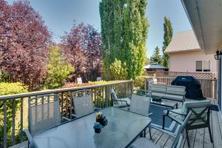 Photo 39: 256 COVENTRY Green NE in Calgary: Coventry Hills Detached for sale : MLS®# A1024304