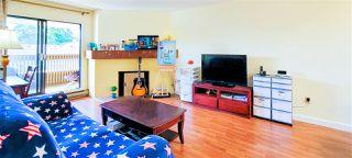 "Main Photo: 331 7451 MINORU Boulevard in Richmond: Brighouse South Condo for sale in ""WOODRIDGE ESTATES"" : MLS®# R2489299"