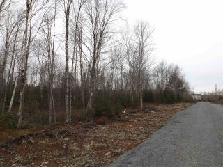 Photo 4: Lot CM-2G McKenzie Lane in Mount Uniacke: 105-East Hants/Colchester West Vacant Land for sale (Halifax-Dartmouth)  : MLS®# 202017887