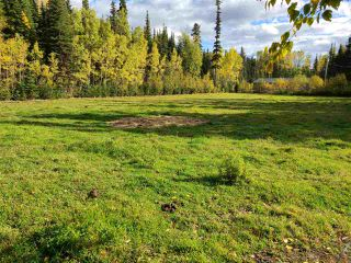 Photo 34: 4400 KNOEDLER Road in Prince George: Hobby Ranches House for sale (PG Rural North (Zone 76))  : MLS®# R2502367