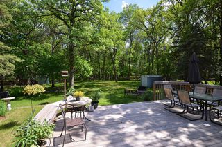 Photo 27: 373 Marlton Crescent in Winnipeg: Single Family Detached for sale (Charleswood)  : MLS®# 1413419