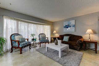 Photo 5: 11110 23A Avenue in Edmonton: Zone 16 House for sale : MLS®# E4176867