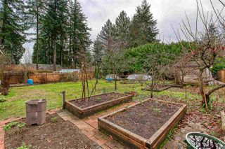 Photo 18: 14266 PARK Drive in Surrey: Bolivar Heights House for sale (North Surrey)  : MLS®# R2422969