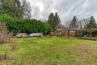 Photo 19: 14266 PARK Drive in Surrey: Bolivar Heights House for sale (North Surrey)  : MLS®# R2422969