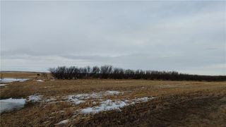 Photo 8: 262033 RGE RD 12: Balzac Land for sale : MLS®# C4289013
