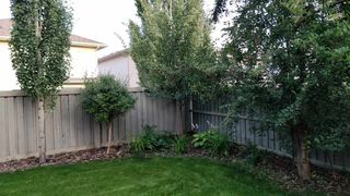 Photo 43: 1025 Hope Road in Edmonton: Zone 58 House for sale : MLS®# E4193936