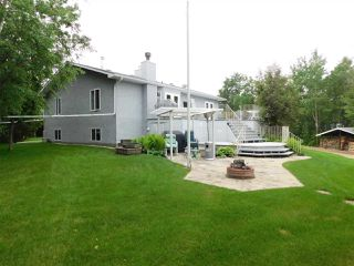 Photo 41: 56503 Rge Rd 231: Rural Sturgeon County House for sale : MLS®# E4203682