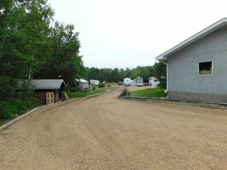 Photo 38: 56503 Rge Rd 231: Rural Sturgeon County House for sale : MLS®# E4203682