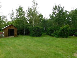 Photo 49: 56503 Rge Rd 231: Rural Sturgeon County House for sale : MLS®# E4203682