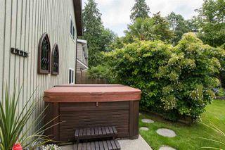Photo 23: 294 W MURPHY Drive in Delta: Pebble Hill House for sale (Tsawwassen)  : MLS®# R2471820