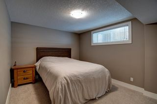 Photo 22: 624 Coopers Square: Airdrie Detached for sale : MLS®# A1017574