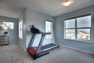 Photo 23: 228 COOPERS Hill SW: Airdrie Detached for sale : MLS®# A1019535