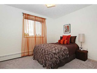 Photo 13: 318 20 DOVER Point SE in CALGARY: Dover Glen Condo for sale (Calgary)  : MLS®# C3570798