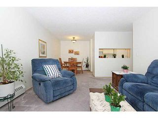 Photo 7: 318 20 DOVER Point SE in CALGARY: Dover Glen Condo for sale (Calgary)  : MLS®# C3570798