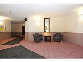 Photo 17: 318 20 DOVER Point SE in CALGARY: Dover Glen Condo for sale (Calgary)  : MLS®# C3570798
