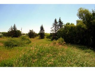 Photo 20: 75 Main Street in MARCHAND: Manitoba Other Residential for sale : MLS®# 1313880