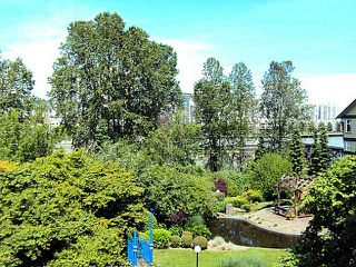 Photo 8: # 304 83 STAR CR in New Westminster: Queensborough Condo for sale : MLS®# V1010947