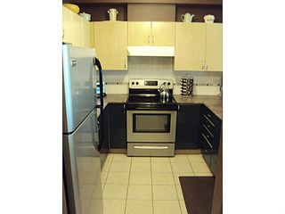 Photo 4: # 304 83 STAR CR in New Westminster: Queensborough Condo for sale : MLS®# V1010947