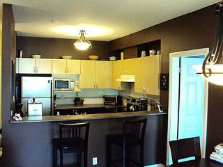 Photo 5: # 304 83 STAR CR in New Westminster: Queensborough Condo for sale : MLS®# V1010947