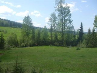 Photo 3: DL 8331 LITTLE LAKE Road in Williams Lake: Horsefly Land for sale (Williams Lake (Zone 27))  : MLS®# N239450