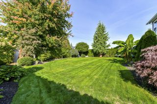 Photo 20: 21625 45 Avenue in Langley: Murrayville House for sale : MLS®# R2341850