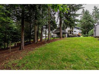 """Photo 2: 1645 KING Crescent in Abbotsford: Poplar House for sale in """"University District"""" : MLS®# R2407336"""