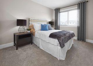 Photo 11: 3821 CHRUSTAWKA Place in Edmonton: Zone 55 House for sale : MLS®# E4185688