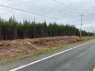 Photo 8: 1405 Highway 7 in Marie Joseph: 303-Guysborough County Vacant Land for sale (Highland Region)  : MLS®# 202010345