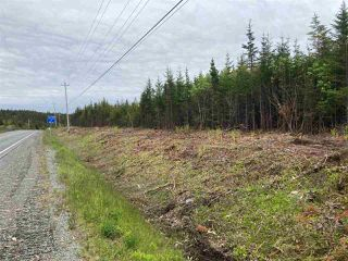 Photo 10: 1405 Highway 7 in Marie Joseph: 303-Guysborough County Vacant Land for sale (Highland Region)  : MLS®# 202010345