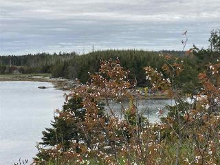 Photo 4: 1405 Highway 7 in Marie Joseph: 303-Guysborough County Vacant Land for sale (Highland Region)  : MLS®# 202010345