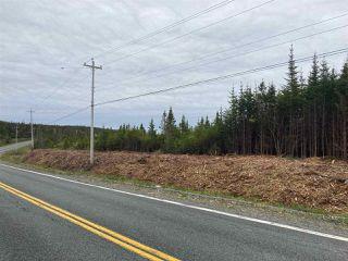 Photo 7: 1405 Highway 7 in Marie Joseph: 303-Guysborough County Vacant Land for sale (Highland Region)  : MLS®# 202010345