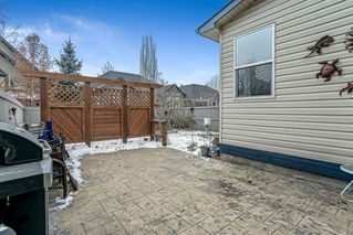 Photo 33: 200 Cranston Drive SE in Calgary: Cranston Detached for sale : MLS®# A1050743