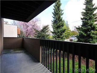 Photo 14: 209 3252 Glasgow Ave in VICTORIA: SE Quadra Condo for sale (Saanich East)  : MLS®# 601881
