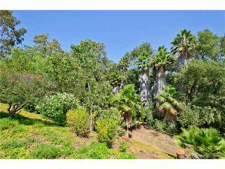 Photo 23: SOUTH ESCONDIDO House for sale : 3 bedrooms : 769 Mockingbird Circle in Escondido
