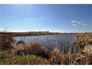 Photo 20: 243017 Range Road 240: Rural Wheatland County Residential Detached Single Family for sale : MLS®# C3624413