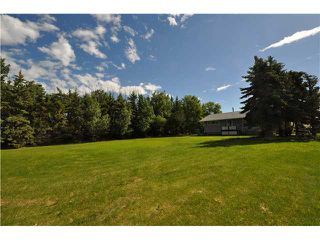 Photo 14: 243017 Range Road 240: Rural Wheatland County Residential Detached Single Family for sale : MLS®# C3624413