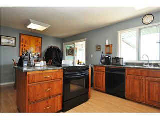 Photo 4: 243017 Range Road 240: Rural Wheatland County Residential Detached Single Family for sale : MLS®# C3624413