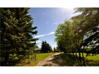 Photo 15: 243017 Range Road 240: Rural Wheatland County Residential Detached Single Family for sale : MLS®# C3624413