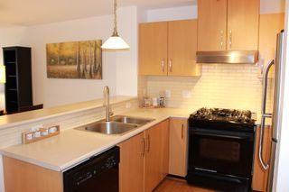 Photo 8: 405 400 KLAHANIE DRIVE in Port Moody: Port Moody Centre Condo for sale : MLS®# R2395453