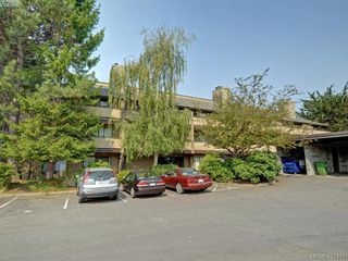Photo 21: 302 3215 Alder St in VICTORIA: SE Quadra Condo for sale (Saanich East)  : MLS®# 828207